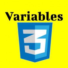 CSS Variables 강좌